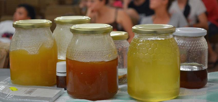 Charla sobre la miel local